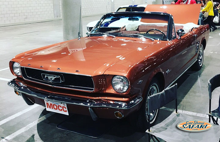 Dom-66Mustang-7